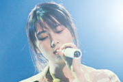 ZARD Screen Harmony 2014