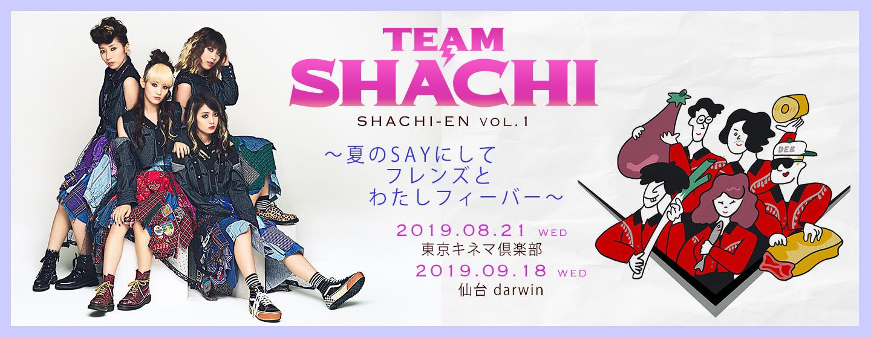 TEAM SHACHI / フレンズ